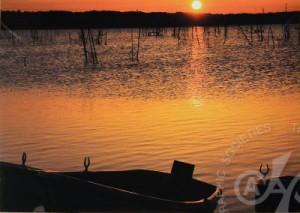 「湖畔の朝」