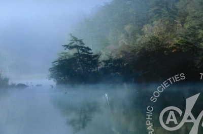 「朝霧の湖岸」